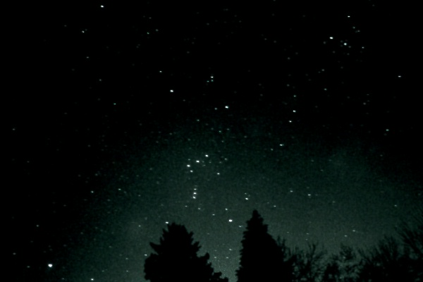 Orion and Sirius      ...
