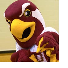 Talon the Falcon wants YOU to come to Homecoming and Parents Weekend