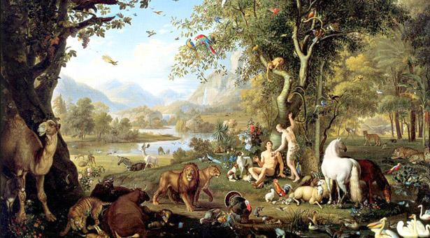 Nach der Erschaffung der Welt existierten viele Tiere.