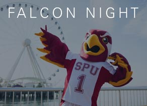 Falcon Night