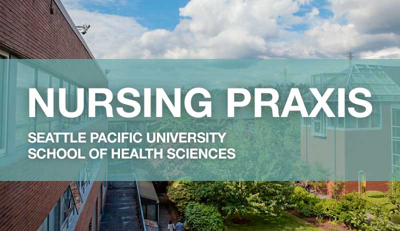nursing praxis Sally thorne, rn, phd, faan, fcahs, is a professor and former director of the school of nursing at the university of british columbia, where she currently also holds the position of associate dean of applied science.
