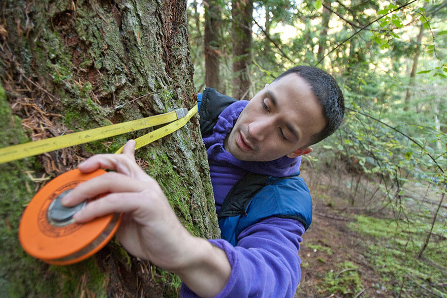 An SPU student gathers tree data on Blakely Island