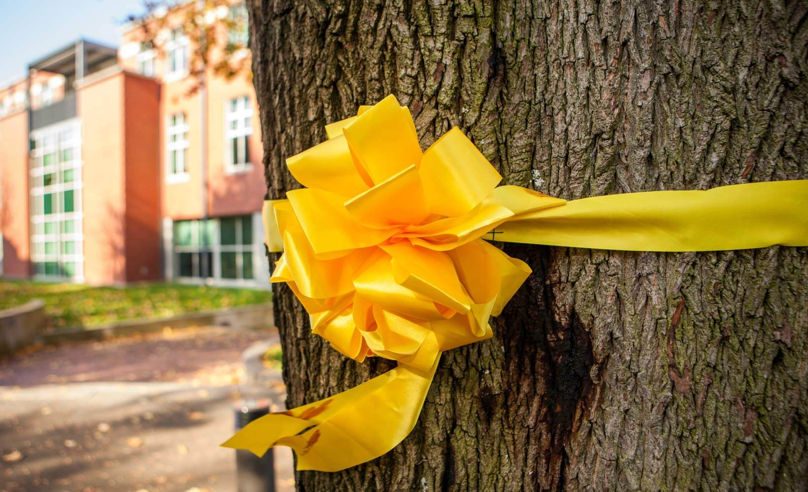 Yellow Ribbon at SPU