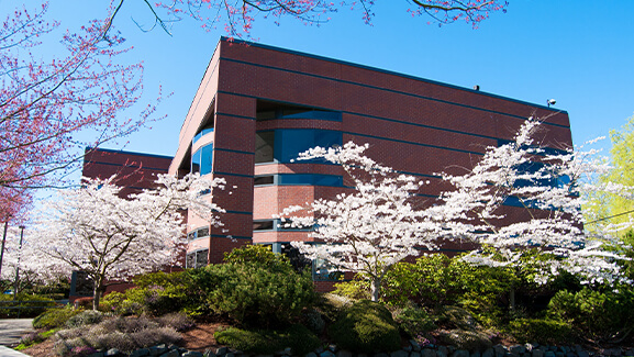 McKenna Hall on the Seattle Pacific University campus in spring with cherry blossoms in bloom.
