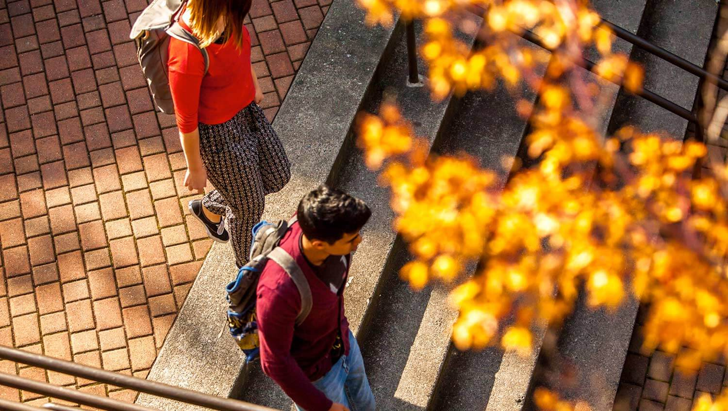 Students walking down the steps
